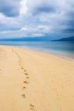 Empreintes de pas dans une plage tropicale Photo stock