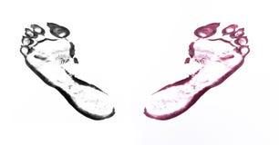 Empreintes de pas de bête sur le blanc Image stock