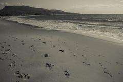 Empreintes de pas de désert d'océan Photographie stock libre de droits