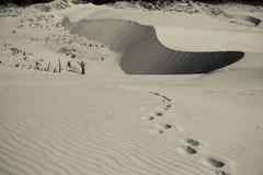 Empreintes de pas de désert d'océan Images libres de droits