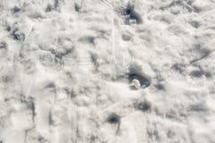 Empreintes de pas de neige Photographie stock