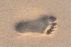 Empreintes de pas de sable Image stock