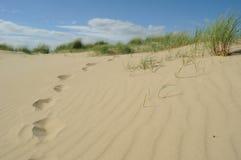 Empreintes de pas en dunes de sable Images stock
