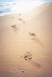 Empreintes de pas en sable Photographie stock