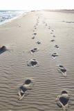 Empreintes de pas en sable de plage Photo stock