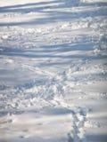 Empreintes de pas humaines sur la neige bleue photos libres de droits