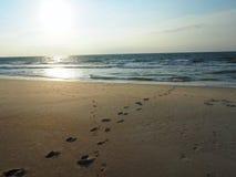 Empreintes de pas menant dans l'Océan Atlantique chez Carolina Beach photo libre de droits