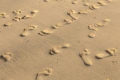 Empreintes de pas sur à sable jaune Photographie stock libre de droits