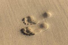 Empreintes de pas sur à sable jaune Photo stock