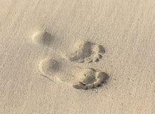 Empreintes de pas sur à sable jaune Images stock