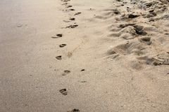 Empreintes de pas sur la plage sablonneuse sur le bord de la mer de la Mer Noire chez Obzor, Bulgarie Image stock
