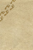 Empreintes de pas sur le fond de peau Photo stock