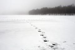 Empreintes de pas sur le lac de neige images stock
