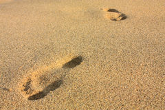 Empreintes de pas sur une plage. Tayrona, Colombie Images libres de droits