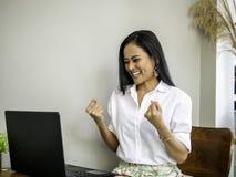 Empresários asiáticos novos bonitos bem sucedidos que conseguem objetivos imagem de stock