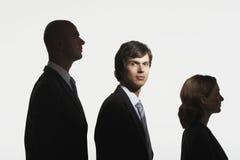 Empresários na fileira na ordem da altura Fotografia de Stock