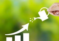 Empresa crescente com planta de papel Foto de Stock