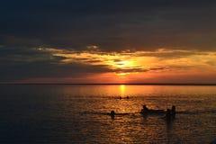 Empresa que nada no por do sol sobre o mar imagens de stock royalty free