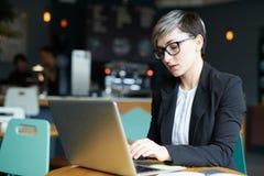Empresaria concentrada que trabaja en café fotografía de archivo