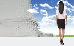 Empresaria hermosa en camisa y falda rear Fotos de archivo