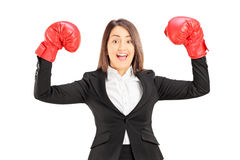 Empresaria joven con los guantes de boxeo rojos que gesticula éxito Fotografía de archivo libre de regalías