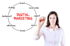 Empresaria joven que detiene a un marcador y que dibuja el diagrama circular de la estructura del proceso de márketing digital Imagen de archivo libre de regalías