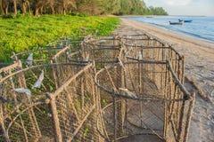 Emprisonne l'équipement pour que le pêcheur pêche des poissons Photos stock