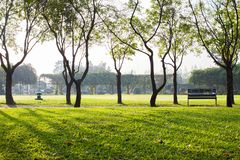 Empthy running lanes of road in park. Between tree at sunset timing location at Bangkok Thailand stock images