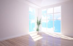 Empty 3d interior. With flower Royalty Free Stock Photography