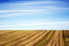 Empty Agricultural Field Under Blue Sky Royalty Free Stock Images