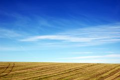 Empty Agricultural Field Under Blue Sky Stock Image