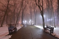 Empty park in foggy winter evening. Empty alley with benches in the park. Misty winter evening in the empty park with sky colored in red tint stock photography