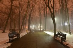 Empty park in winter evening. Empty alley with benches in the park. Misty winter evening in the empty park with sky colored in red tint royalty free stock photos