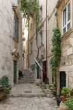 Empty alley and stairs at Dubrovnik's Old Town. Narrow and empty alley, potted plants and vine on the wall at the Old Town in Dubrovnik, Croatia Stock Photo
