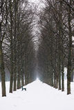 Empty alley in winter Stock Photography
