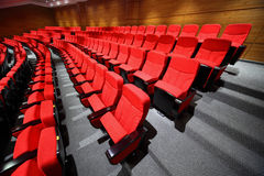 Empty arm-chairs stand rows in hall Royalty Free Stock Images