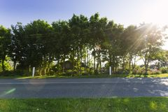 Empty asphalt country road passing through green agricultural fields. Countryside landscape on a sunny spring day in Royalty Free Stock Photos