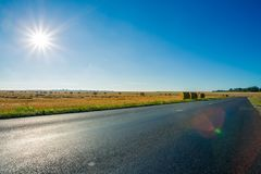 Empty asphalt country road passing through yellow wheat field. Country landscape on sunny summer day with sunbeams in Royalty Free Stock Image