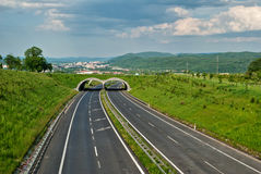 Empty asphalt highway with ecoduct Royalty Free Stock Photo