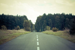 Empty asphalt road across the forest Stock Images