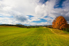 Empty autumn golf course Royalty Free Stock Photography