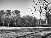Empty Autumn paddock Stock Photography
