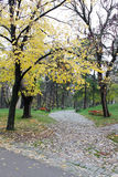Empty Autumn Park. Stone sidewalk and benches in empty autumn park. Photo taken in Nis, Serbia Stock Photos