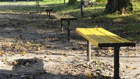 Empty autumn park. Empty yellow benches in the autumn park stock video footage