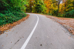 Empty autumn road Royalty Free Stock Photography