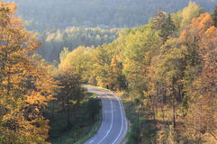 Empty autumn road. With beautiful landscape and yellow/orange trees stock image