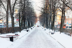 Empty Avenue with benches and trees in snow Royalty Free Stock Photo