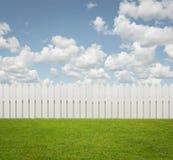 Empty back yard background Stock Photo