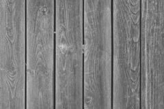 Empty background with texture of gray boards. The fence is made of flat wooden planks. stock images