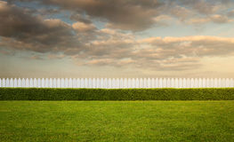 Empty backyard Royalty Free Stock Images